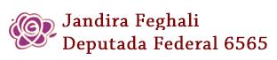 Jandira Feghali Deputada Federal 6565